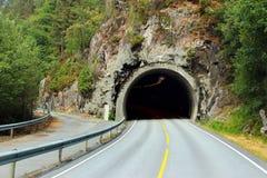 Główna droga wchodzić do tunel i objazd, Norwegia Obrazy Stock