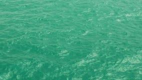 głębii śródpolne macro przesmyka nawierzchniowej wody fala zbiory wideo