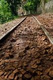 głębii śródpolny kolei płycizny ślad Obraz Stock