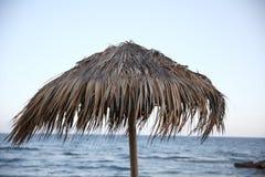 głębii pola płycizna strzelał pionowo słońce parasol bardzo obraz stock