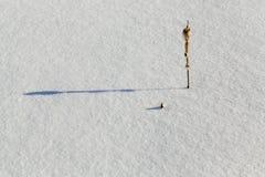 Głębocy śniegów dryfy fotografia royalty free
