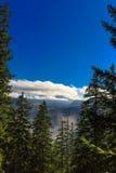 Głębocy błękitni skys z drzewami i wzgórzami obraz royalty free