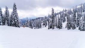 Głęboka śnieg paczka w wysoki wysokogórskim na narciarskich bieg przy wioską słońce Osiąga szczyt, kolumbiowie brytyjska, Kanada zdjęcie royalty free