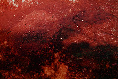 głęboka czerwień crunch Fotografia Stock