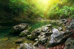 głęboka lasowa halna rzeka Zdjęcie Stock