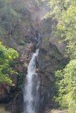 głęboka lasowa siklawa Zdjęcie Royalty Free