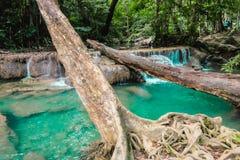 Głęboka lasowa siklawa w erawan parka narodowego kanchanaburi obrazy royalty free