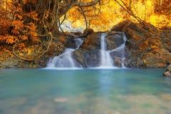 Głęboka lasowa siklawa w jesieni przy Sarika siklawy światem Herita Obraz Royalty Free