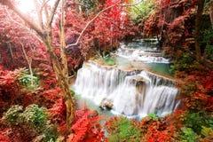 Głęboka lasowa siklawa w jesieni scenie przy Huay Mae Kamin waterfal Zdjęcie Royalty Free