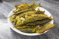 Głęboka Smażąca ryba z curry'ego proszkiem Obrazy Royalty Free