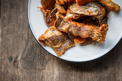 Głęboka Smażąca Tilapia ryba z solą, Odgórny widok Obrazy Royalty Free