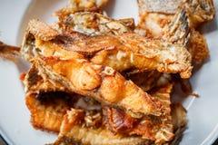 Głęboka Smażąca Tilapia ryba z solą, Odgórny widok Obraz Royalty Free
