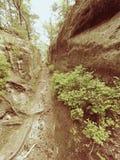 Głęboka wejściowa ścieżka w piaskowa bloku Dziejowa ścieżka przez lasu Zdjęcia Royalty Free