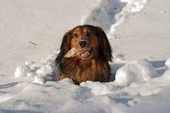 głęboki śnieg Obrazy Royalty Free