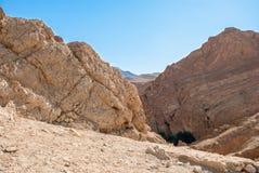 Głęboki halny wąwóz w pustyni Zdjęcie Royalty Free