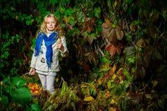 Głęboki las zdjęcia stock