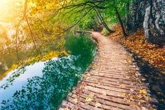 Głęboki lasowy strumień z kryształem - jasna woda z drewniany pahway Plitvice jeziora zdjęcia royalty free