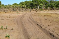 głęboki piasek wynurza się szlakowych samochody, przy Bwabwata, Namibia Zdjęcie Stock