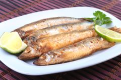Głęboki smaży mały rybi gromadnik i pokrojona cytryna na bielu talerzu Dobra przekąska piwo Obraz Royalty Free