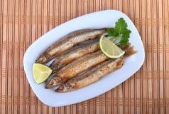 Głęboki smaży mały rybi gromadnik i pokrojona cytryna na bielu talerzu Dobra przekąska piwo Obrazy Royalty Free