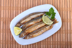 Głęboki smaży mały rybi gromadnik i pokrojona cytryna na bielu talerzu Dobra przekąska piwo Zdjęcia Royalty Free