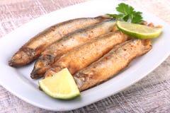 Głęboki smaży mały rybi gromadnik i pokrojona cytryna na bielu talerzu Dobra przekąska piwo Zdjęcie Royalty Free