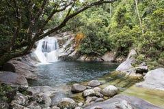 Głęboki tropikalnego lasu deszczowego basen Obrazy Stock