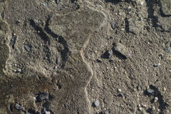 Głęboki ulga betonu Grunge tekstury tło Obrazy Stock