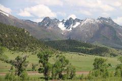 Głęboki widok góry wokoło lasu obrazy royalty free