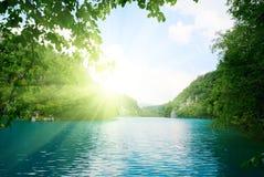 głębokie jezioro forest fotografia royalty free