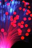 głębokość włókien optycznej pola płytki Obraz Royalty Free