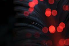 głębokość włókien optycznej pola płytki Fotografia Royalty Free