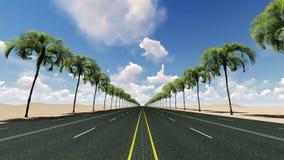 Gładki kamera ruch przez królewskiej palmy alei przy pustynią ilustracji