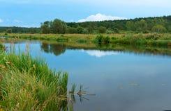 Gładki kanał z odbiciem niebo, długa rzeka z porosłymi zielonymi bankami, sztuczny staw Zdjęcia Stock