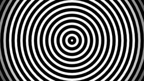 Gładki relaksujący abstrakcjonistyczny tło Animowani pulsuje okręgi lub radiowe fale czarny white ilustracja wektor