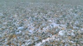 Gładzi fala Na plaży