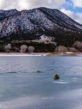Głaz na powierzchni Zamarznięty jezioro Obrazy Stock