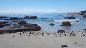 Głaz plaża zdjęcia stock