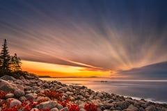 Głaz plaża w Acadia parku narodowym obraz royalty free