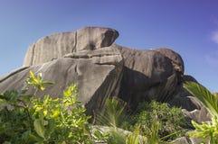 Głaz skały i liść kokosowa palma w losu angeles Digue wyspie Seychelles Obrazy Royalty Free