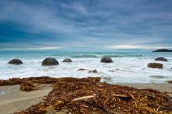głazu moeraki brzegowy wschodni nowy południowy Zealand Zdjęcia Stock