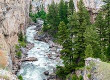 Głazu Rzeczny spływanie przez skalistego jaru w Montana zdjęcia royalty free