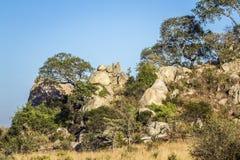Głazy kształtują teren w Kruger parku narodowym, Południowa Afryka Obraz Royalty Free