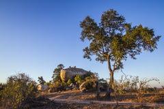 Głazy kształtują teren w Kruger parku narodowym, Południowa Afryka Zdjęcia Royalty Free