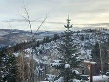 Głodująca zimy kraina cudów Zdjęcie Stock