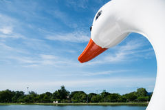 Głowa łabędzi łódkowaty żeglowanie w jeziorze Zdjęcie Royalty Free