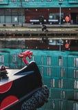 Głowa bestia na prow łódź Zdjęcia Royalty Free