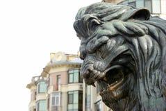 Głowa brązowy lew brązowa rzeźba huczenie lew na zabytku w Poltava, Ukraina zdjęcia stock