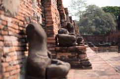 Głowa Buddha wewnątrz bluesly fotografia stock