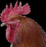 Głowa kogut - mozaika Fotografia Royalty Free